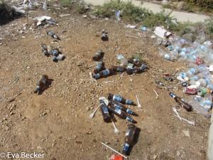 Life in Plastic (16 von 16)