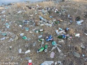Life in Plastic (9 von 16)