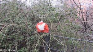 Plastikbäume (1 von 38)
