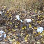 Plastikbäume (20 von 38)