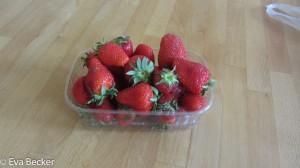Erdbeeren-7377