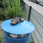 Schuh anziehen-7861